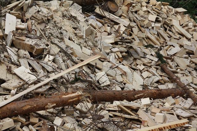 Biomassa duurzame energie